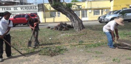 Continúan las jornadas de limpieza y saneamiento en las avenidas de la capital